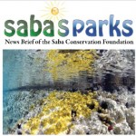 Saba Conservation Foundation: Newsletter March 2014